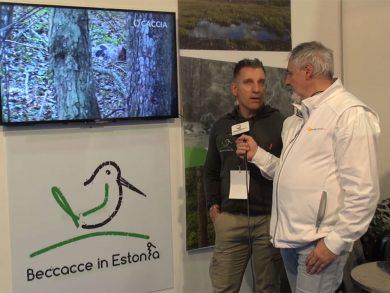 Beccacce in Estonia - Caccia Village 19